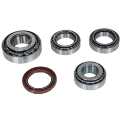 Diff Repair Kit Falcon BA BF 2002-2005 Wagon Ute Bearing For Ford M86 215mm Ring Gear